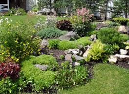 uncategorized simple rock garden ideas
