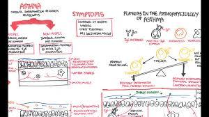 Pathophysiology Of Emphysema Flow Chart Asthma Pathophysiology