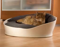 luxury cat beds furniture. black luxury cat beds furniture