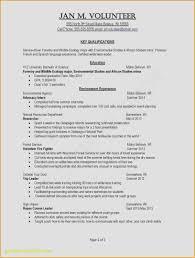 fundraising letter format immigration ficer sle resume format