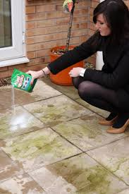 spring clean for outdoors dri pak