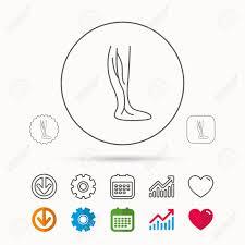 Leg Vein Chart Phlebology Icon Leg Veins Sign Varicose Or Thrombosis Symbol