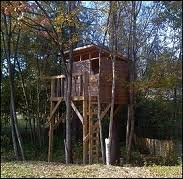 basic tree house pictures. TreeHouses Book By Stiles Designs Basic Tree House Pictures