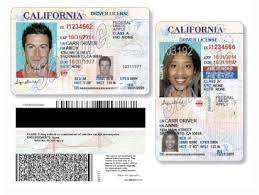 Driver Renewal Ca License H1b