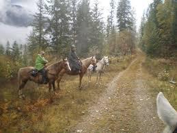 equestrian winter coats