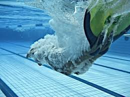Image result for Finswimming: images