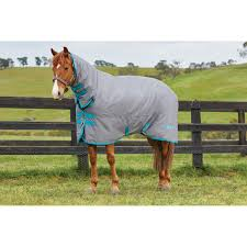 saxon 600 combo heavyweight turnout rug home