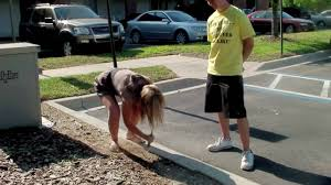 Women peeing in public parks