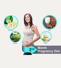 2nd Month Pregnancy Diet What To Eat And Avoid