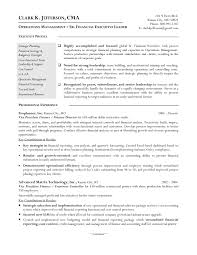Finance Manager Resume Template Resume Samples Program Finance