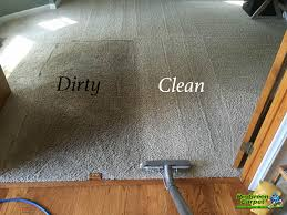 raleigh carpet cleaning company