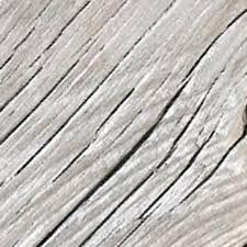 hollywood bowl alaskan yellow cedar