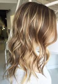 Light Brunette Shade With Blonde Highlights