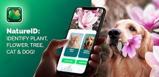 NatureID: Identify plant, flower, tree, <b>cat & dog</b>! - Apps on Google Play