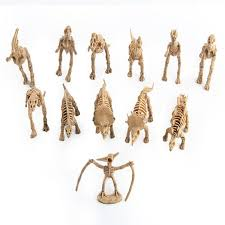 2019 starz diy 3d wooden animals dinosaur skeleton puzzles toys model building kits children gifts for kids from guoli546 36 19 dhgate com