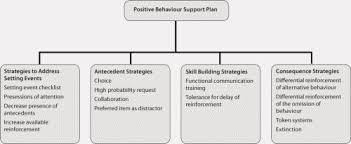 addressing challenging behaviour in children down syndrome figure 1 components of a positive behaviour support plan example interventions