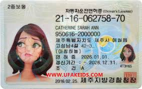 Best Online Korea Make Id 가짜 Ids 면허증 Buy A 운전 Fake 한국 Maker –
