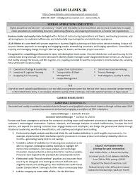 Military Executive Officer Sample Resume Best Executive Resume Samples Professional Resume Samples