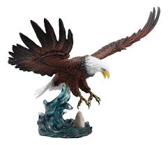 Coloring Book Bald Eagle Colors Incredible Picture Ideas