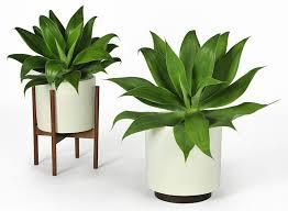 Planters, Indoor Pots For Plants Decorative Planters Stand White Pot For  Succulent Plant: amusing