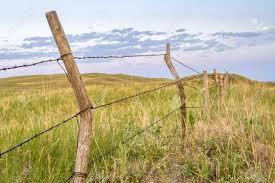 Barbed wire fence cattle Gate Barbed Wire Cattle Fence In Nebraska Sandhills Summer Scenery Stock Photo 105417890 123rfcom Barbed Wire Cattle Fence In Nebraska Sandhills Summer Scenery Stock