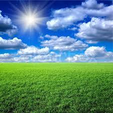 green grass blue sky.  Green And Green Grass Blue Sky Colourbox