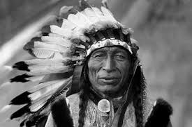 let s share your work the world  a rhetorical analysis essay on chief seattle s letter