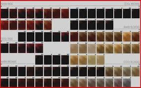 Goldwell Topchic Color Chart Pdf Bahangit Co