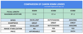 Which Canon 85mm Lens Is The Best Lens For You The Lens