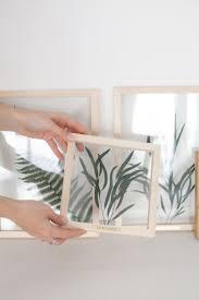 Eucalyptus Nicholii Pressed Leaves, Framed Plant Art by MyBotanica