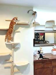 cat wall mounts cat wall mounts cat wall mounts best cat climbing wall ideas on cat cat wall