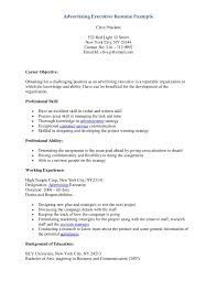sample resume executive sample resume executive makemoney alex tk