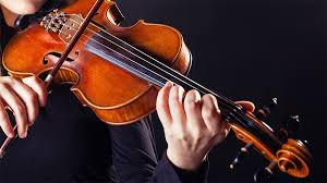 Image result for violin pictures