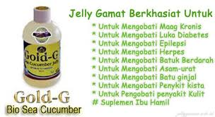 obat herbal alami Gold G