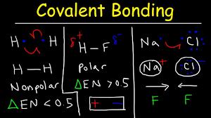 Ionic Vs Covalent Bonds Venn Diagram Polar Covalent Bonds And Nonpolar Covalent Bonds Ionic Bonding Types Of Chemical Bonds
