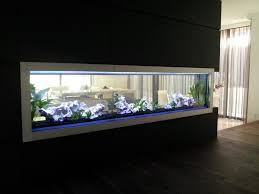 Cool Aquariums For Sale Custom Aquarium Custom Aquariums Starfire Eurobracing In Built