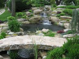 Small Picture Garden Pond Designs Waterfalls Small Home Garden Ponds And