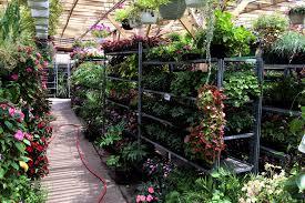 garden nurseries near me. Landscape Nursery Near Me Lovely Best Garden Store Options In Nyc For Plants Flowers Landscaping Nurseries