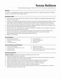 Templates For Professional Resumes 24 Fresh Project Manager Resume Example Professional Resume 18