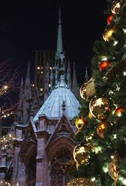 Cathedral Square Park Christmas Lights Christmas Tree In New York City St Patricks Cathedral New