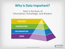 Important Of Data Magdalene Project Org