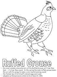 grouse animal coloring pages