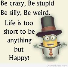 Funny Happy Quotes Impressive Funny Happy Stupid Minion Quote