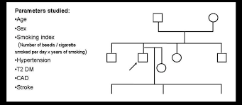 Diabetes Pedigree Chart Pedigree Chart Information Gleaned Age Sex Smoking