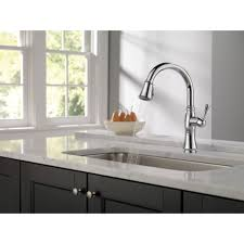 Delta Kitchen Sink Faucets Delta Cassidy Single Handle Standard Kitchen Faucet With Spray