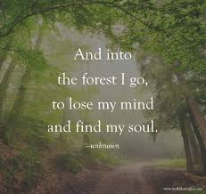 Forest Quotes Best And Into The Forest I Go Steemit