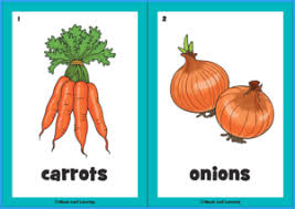 Food Flash Cards Food Drink Resources Maple Leaf Learning Library