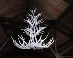 white tail inverted antler chandelier diameter 25 width 18 lights 10