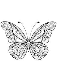 Insetti 27022 Farfalle E Insetti Disegni Da Colorare Per Adulti