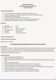 Kinds Of Resume Format  Types Of Resumes And Their Uses   Saindeorg